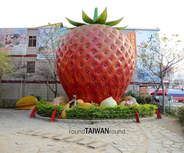 Miaoli - Strawberry Season